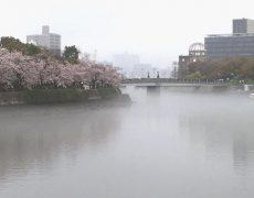 花時雨の広島、平和大橋の上から