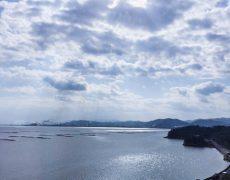 #905の窓からこんにちは(^^)/